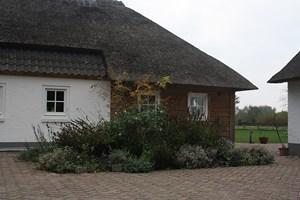 authentieke woonboerderij